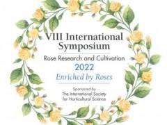 8-rose-simpozion.jpg
